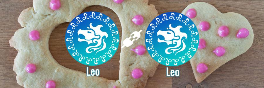 Compatibilidad de Leo y Leo